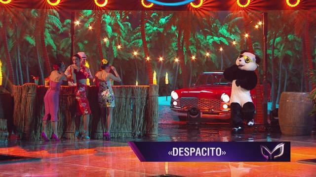 Панда: Despacito.НТВ.Ru: новости, видео, программы телеканала НТВ