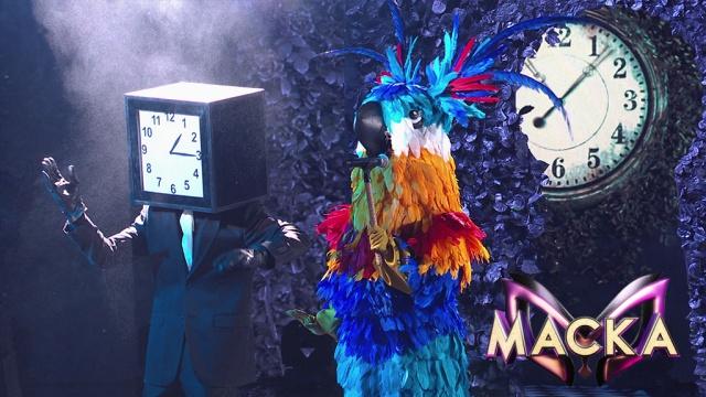 Удивляет каждый раз! Попугай покорил всех исполнением хита Валерии.НТВ.Ru: новости, видео, программы телеканала НТВ