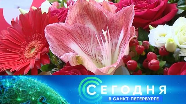 6 апреля 2020 года. 19:20.6 апреля 2020 года. 19:20.НТВ.Ru: новости, видео, программы телеканала НТВ