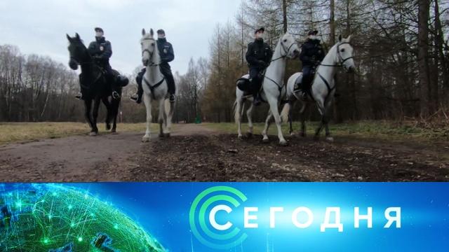 9 апреля 2020 года. 08:00.9 апреля 2020 года. 08:00.НТВ.Ru: новости, видео, программы телеканала НТВ