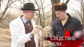 Расследование зверств томского маньяка, растянувшееся на годы, — вфильме из цикла «Следствие вели…».НТВ.Ru: новости, видео, программы телеканала НТВ