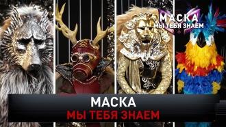 «Маска, мы тебя знаем».«Маска, мы тебя знаем».НТВ.Ru: новости, видео, программы телеканала НТВ