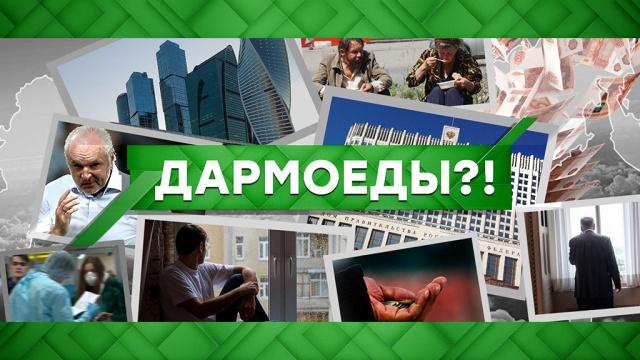 Выпуск от 5 мая 2020 года.Дармоеды?!НТВ.Ru: новости, видео, программы телеканала НТВ