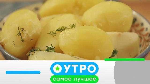 5мая 2020 года.5мая 2020 года.НТВ.Ru: новости, видео, программы телеканала НТВ