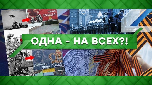 Выпуск от 8 мая 2020 года.Одна — на всех?!НТВ.Ru: новости, видео, программы телеканала НТВ