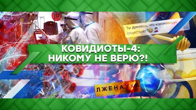 Выпуск от 12 мая 2020 года.Ковидиоты — 4: никому не верю?!НТВ.Ru: новости, видео, программы телеканала НТВ