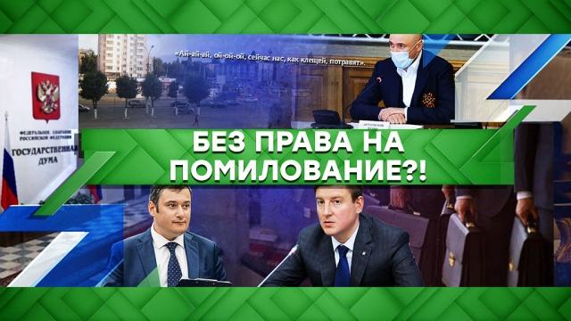 Выпуск от 13 мая 2020 года.Без права на помилование?!НТВ.Ru: новости, видео, программы телеканала НТВ