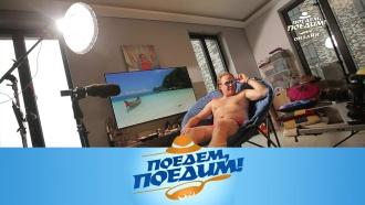 Выпуск от 16 мая 2020 года.Друзья со всего света: флешмоб Джона Уоррена.НТВ.Ru: новости, видео, программы телеканала НТВ