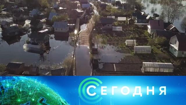 19 мая 2020 года. 16:00.19 мая 2020 года. 16:00.НТВ.Ru: новости, видео, программы телеканала НТВ