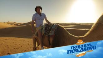 Джон Уоррен переночует как шейх ипопробует верблюжье молоко впутешествии по сказочному Оману. «Поедем, поедим!»— всубботу на НТВ.НТВ.Ru: новости, видео, программы телеканала НТВ