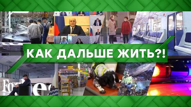Выпуск от 20 мая 2020 года.Как дальше жить?!НТВ.Ru: новости, видео, программы телеканала НТВ