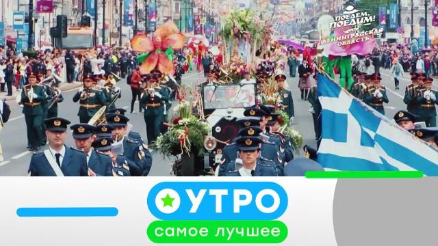 21мая 2020года.21мая 2020года.НТВ.Ru: новости, видео, программы телеканала НТВ
