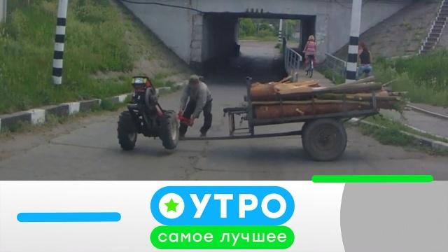 25 мая 2020года.25 мая 2020года.НТВ.Ru: новости, видео, программы телеканала НТВ
