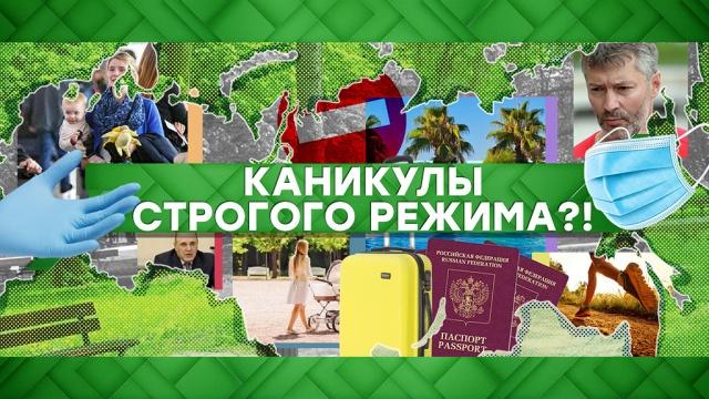 Выпуск от 29 мая 2020 года.Каникулы строгого режима?!НТВ.Ru: новости, видео, программы телеканала НТВ