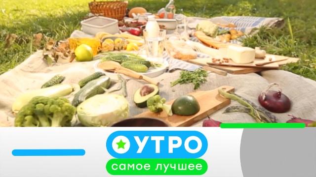 1июня 2020года.1июня 2020года.НТВ.Ru: новости, видео, программы телеканала НТВ