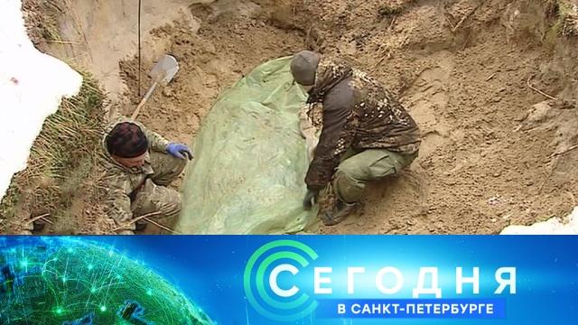 1 июня 2020 года. 19:20.1 июня 2020 года. 19:20.НТВ.Ru: новости, видео, программы телеканала НТВ