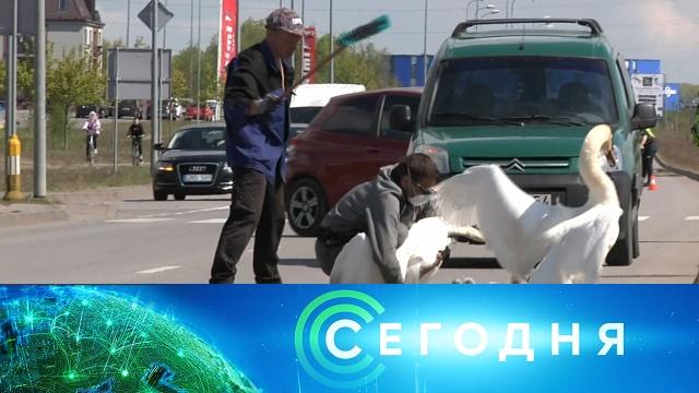 2 июня 2020 года. 23:00.2 июня 2020 года. 23:00.НТВ.Ru: новости, видео, программы телеканала НТВ
