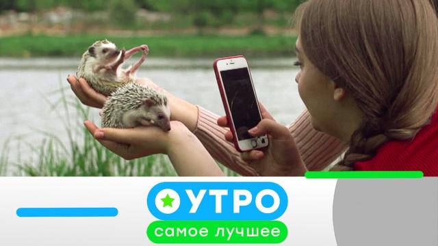 5июня 2020 года.5июня 2020 года.НТВ.Ru: новости, видео, программы телеканала НТВ