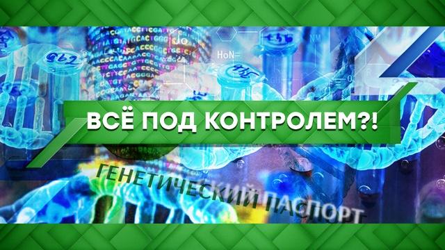 Выпуск от 8 июня 2020 года.Все под контролем?!НТВ.Ru: новости, видео, программы телеканала НТВ