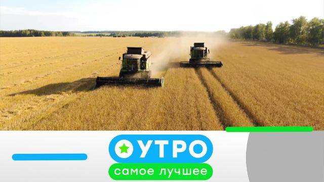 11 июня 2020 года.11 июня 2020 года.НТВ.Ru: новости, видео, программы телеканала НТВ