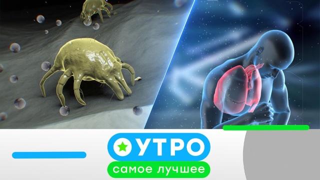 17 июня 2020 года.17 июня 2020 года.НТВ.Ru: новости, видео, программы телеканала НТВ