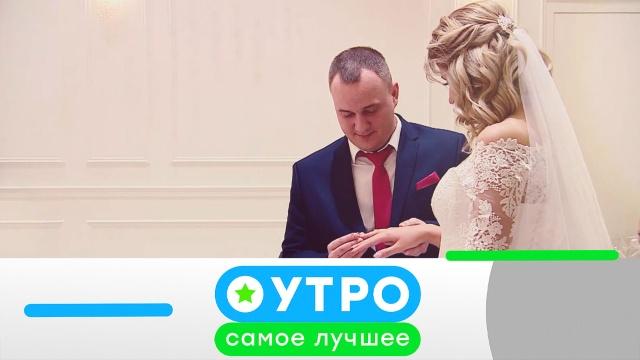 26июня 2020года.26июня 2020года.НТВ.Ru: новости, видео, программы телеканала НТВ