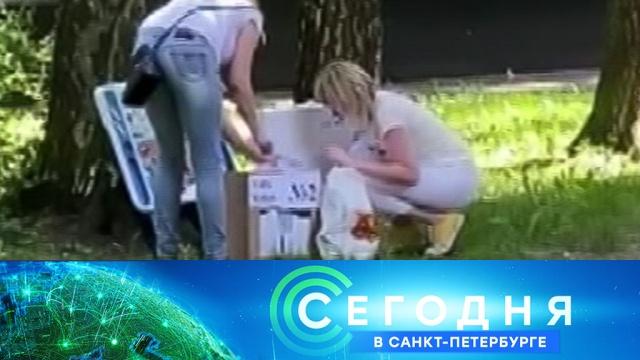 29 июня 2020 года. 16:15.29 июня 2020 года. 16:15.НТВ.Ru: новости, видео, программы телеканала НТВ