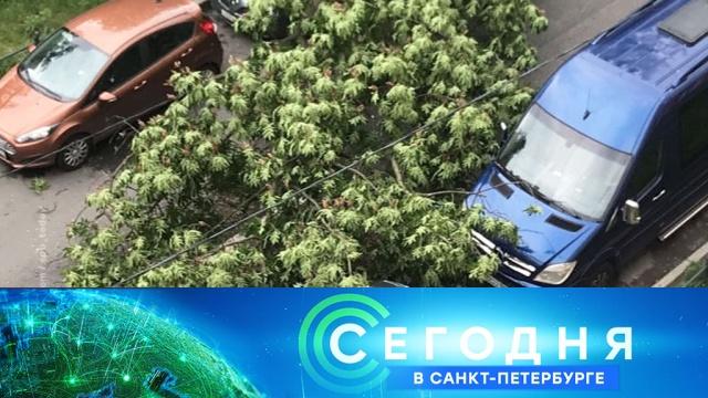30 июня 2020 года. 19:20.30 июня 2020 года. 19:20.НТВ.Ru: новости, видео, программы телеканала НТВ