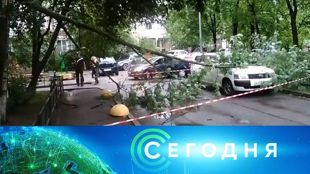 1 июля 2020 года. 08:00.1 июля 2020 года. 08:00.НТВ.Ru: новости, видео, программы телеканала НТВ