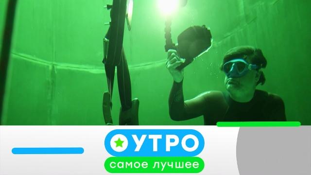 3июля 2020года.3июля 2020года.НТВ.Ru: новости, видео, программы телеканала НТВ