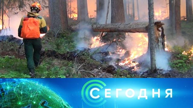 6 июля 2020года. 08:00.6 июля 2020года. 08:00.НТВ.Ru: новости, видео, программы телеканала НТВ
