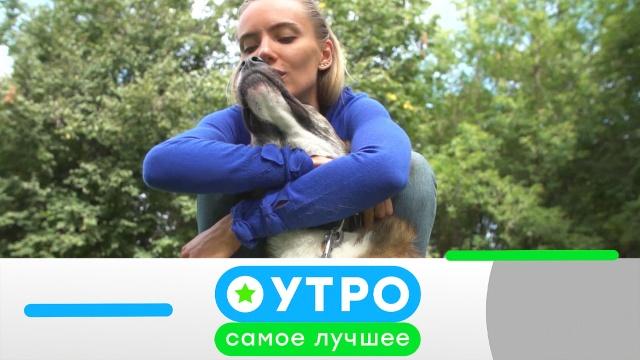 7 июля 2020 года.7 июля 2020 года.НТВ.Ru: новости, видео, программы телеканала НТВ