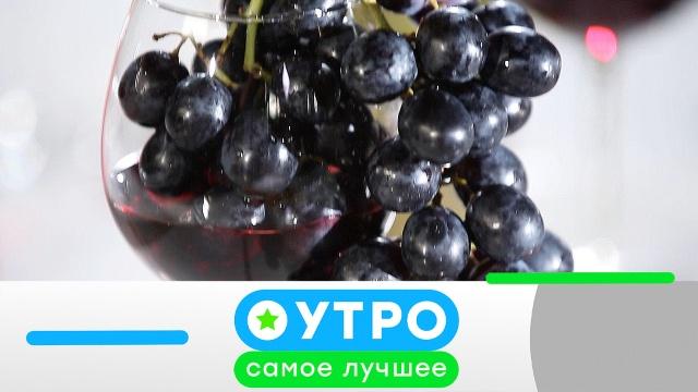9 июля 2020 года.9 июля 2020 года.НТВ.Ru: новости, видео, программы телеканала НТВ