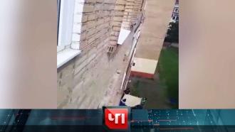 22 июля 2020 года.22 июля 2020 года.НТВ.Ru: новости, видео, программы телеканала НТВ