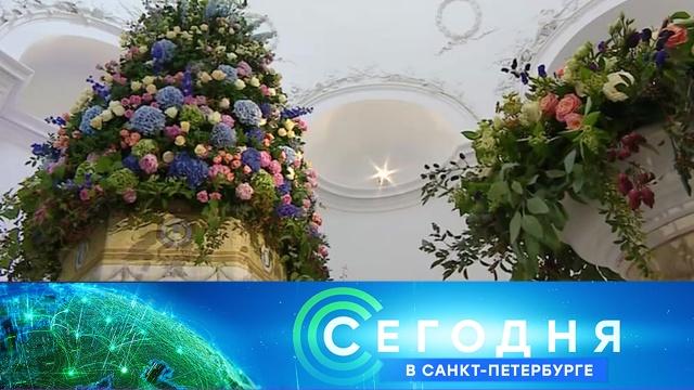 24 июля 2020 года. 19:20.24 июля 2020 года. 19:20.НТВ.Ru: новости, видео, программы телеканала НТВ
