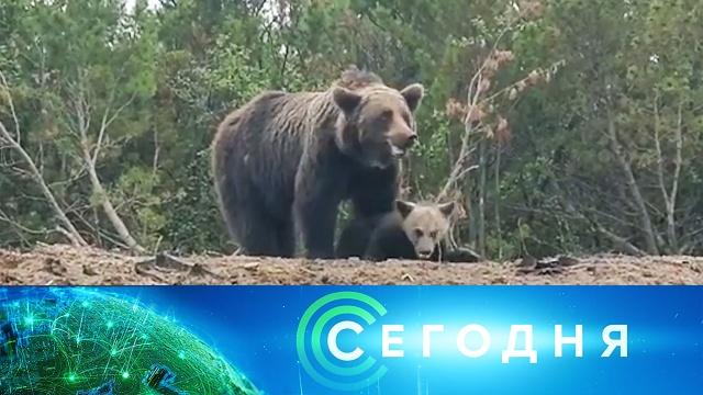 27июля 2020года. 10:00.27июля 2020года. 10:00.НТВ.Ru: новости, видео, программы телеканала НТВ