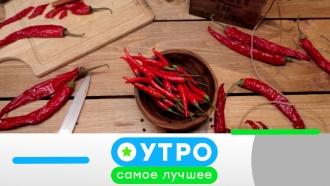 28июля 2020 года.28июля 2020 года.НТВ.Ru: новости, видео, программы телеканала НТВ
