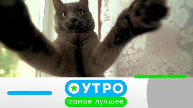 29 июля 2020года.29 июля 2020года.НТВ.Ru: новости, видео, программы телеканала НТВ