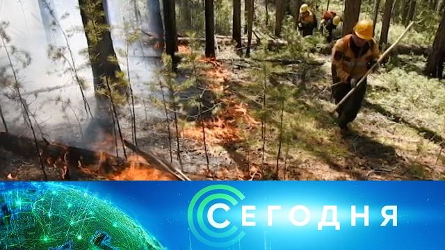 30июля 2020года. 13:00.30июля 2020года. 13:00.НТВ.Ru: новости, видео, программы телеканала НТВ