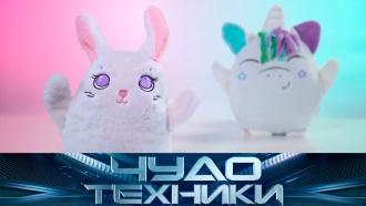 Мягкая игрушка, трансформирующаяся водежду, яйцо для стирки изащита от протечек. «Чудо техники»— 16августа на НТВ