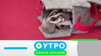 7 августа 2020 года.7 августа 2020 года.НТВ.Ru: новости, видео, программы телеканала НТВ