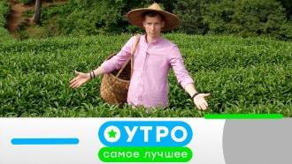 10 августа 2020года.10 августа 2020года.НТВ.Ru: новости, видео, программы телеканала НТВ