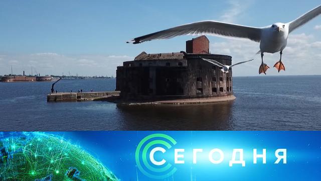 11 августа 2020 года. 10:00.11 августа 2020 года. 10:00.НТВ.Ru: новости, видео, программы телеканала НТВ