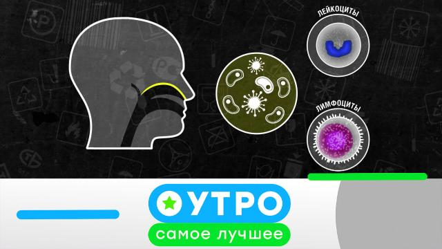 14 августа 2020 года.14 августа 2020 года.НТВ.Ru: новости, видео, программы телеканала НТВ