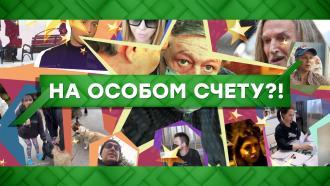 Выпуск от 26 августа 2020 года.На особом счету?!НТВ.Ru: новости, видео, программы телеканала НТВ