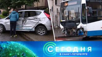 28 августа 2020 года. 16:15.28 августа 2020 года. 16:15.НТВ.Ru: новости, видео, программы телеканала НТВ