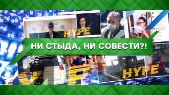 Выпуск от 1сентября 2020года.Ни стыда, ни совести?!НТВ.Ru: новости, видео, программы телеканала НТВ