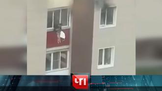 4 сентября 2020 года.4 сентября 2020 года.НТВ.Ru: новости, видео, программы телеканала НТВ