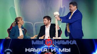 Выпуск от 9сентября 2020года.Через 10лет люди перестанут страдать от мигрени.НТВ.Ru: новости, видео, программы телеканала НТВ