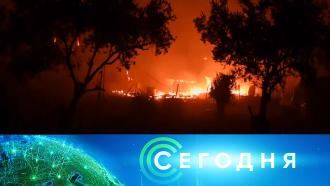 9 сентября 2020 года. 10:00.9 сентября 2020 года. 10:00.НТВ.Ru: новости, видео, программы телеканала НТВ